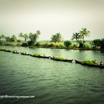 10 things to do on a houseboat on the backwaters of Alleppey (Alappuzha), Kerala