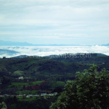 Romancing Ooty in the monsoons