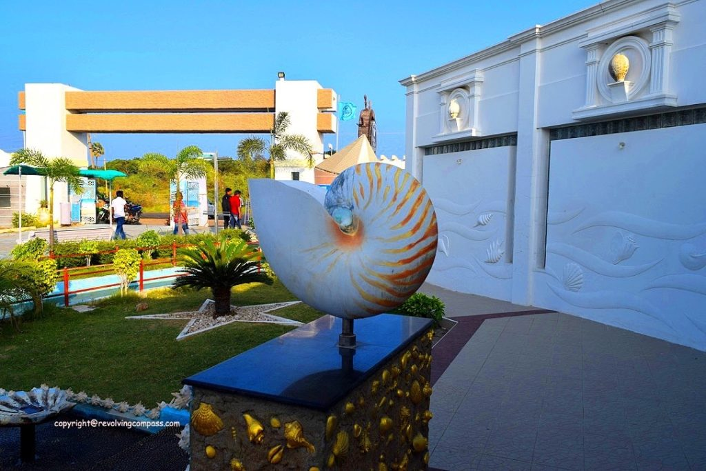 India seashell Museum : Things to do in Mahabalipuram