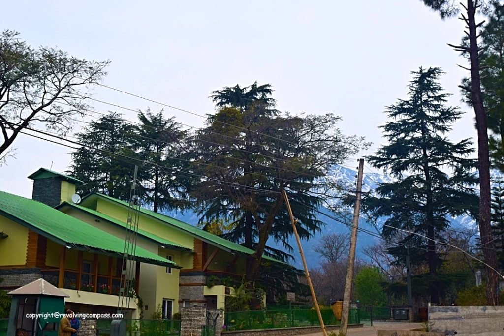 Norwood Greens homestay Palampur