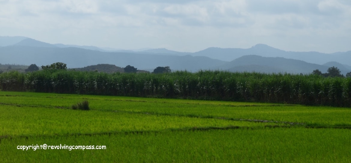 A view from the road trip to B R Hills, Road Trips in India