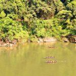 4 day trip to Meghalaya | Dawki Umngot River