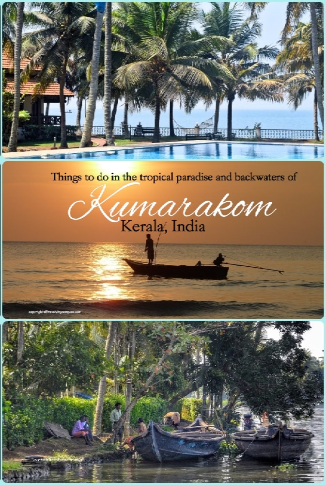 Things to do in Kumarakom , Kerala, India | Vembadan Lake | Backwaters of Kerala | Kumarakom Bird Sanctuary